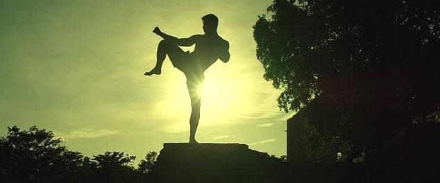kickboxer-2